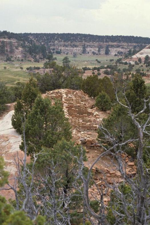 Pettit Site, Togeye Canyon, NM